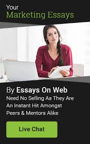 marketing essay writing service help through essays on web contact us