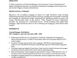 junior accountant resume sample job resume business management junior accountant resume sample isabellelancrayus inspiring format writing resume isabellelancrayus fascinating sample resume example executive