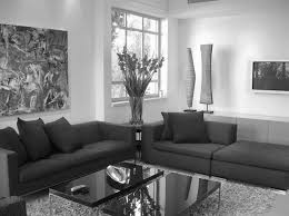 Modern Country Living Room Decorating Black And Silver Living Room Decor Home Design Ideas Gold Idolza