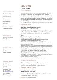 estate agent CV sample, negotiation, marketing and sales, cv writing, resume