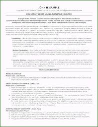 Board Of Directors Resume Template 54 Options You Must Try