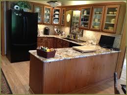 Diy Refinish Kitchen Cabinets 100 Refinishing Kitchen Cabinets Diy Kitchen Astonishing