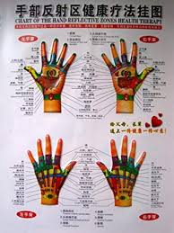 Hand Reflection Chart Amazon Com Chart Of The Hand Reflection Zones Health