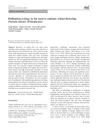 Pollination ecology in the narrow endemic winter-flowering Primula ...