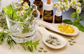 Resultado de imagen de plantas medicinales