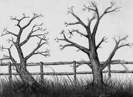 wood fence drawing. Fence Drawing. And Drawing I Wood