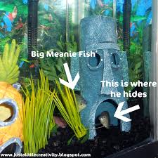 Fun Fish Tank Decorations The Blue Bully Just A Little Creativity