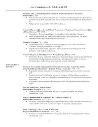 Employment Specialist Resume Delectable Placement Specialist Sample Resume Simple Resume Examples For Jobs