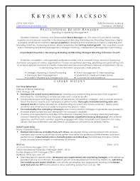 Resume Examples The Resume Shrink