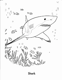 sharkboy and lavagirl coloring pages. Perfect Lavagirl Whale Shark Coloring Pages Unique Sharkboy And Lavagirl  Intended And