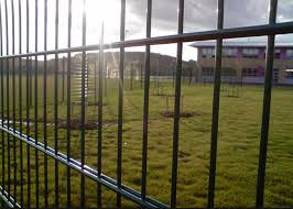 Robust Green Mesh Fencing Wire Fence Gate Low Carbon Steel Wire Material