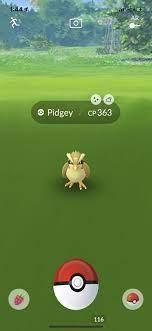 Shiny Pidgey is real | Pokemon go, Gamer girl, Pokemon