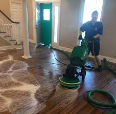 learn about our full hardwood cleaning process below