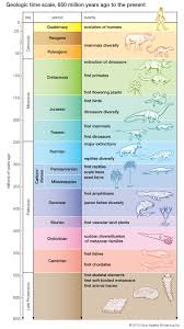 Dinosaur Time Periods Chart Geologic Time History Of Earth Geology Earth Science