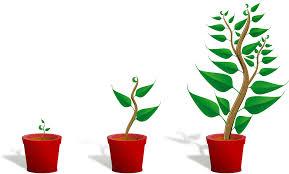Charming Welches Licht Fürs Wachstum   LED Grow Lampe