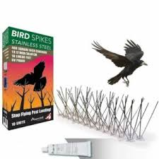 the best bird deters to protect