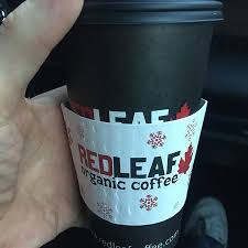 A coffee bean is a seed of the coffea plant and the source for coffee. Red Leaf Organic Coffee Co Picture Of Red Leaf Organic Coffee Kelso Tripadvisor