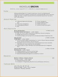 Resume Templates Resume Examples 14262 Cv Format With Marvelous