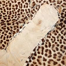 french authentic antique leopard skin rug discovered in france for
