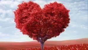 Znalezione obrazy dla zapytania miłosć