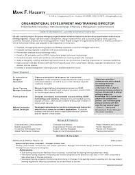 Resume Templates For Word 2007 Gorgeous 44 Beautiful Resume Templates Microsoft Word 44 Lordvampyrnet