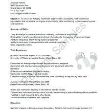 Support Technician Cover Letter Desktop 289619870078 Free Memo