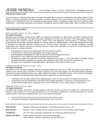 Sales Consultant Sample Resume | Resume For Study