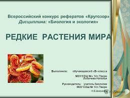 Презентация на тему Всероссийский конкурс рефератов Кругозор  1 Всероссийский конкурс рефератов