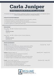 Pharmacist Sample Resume Resume Format 2018 Examples 2 Resume Format Resume Format