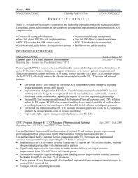 It Executive Resume Sample Free Download New Executive 4o Resume