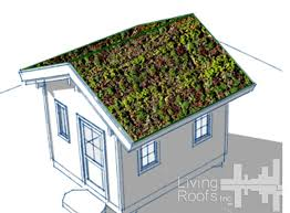 green roof ideas