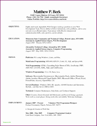 Resume Template Google Docs Simple Resume Template Open Fice
