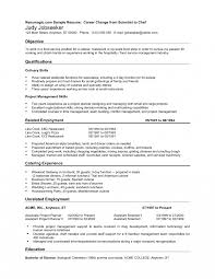 Vip Hostess Resume Examples Summary Air Fresher Sample Objective