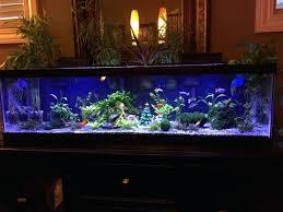 fish tank decor ideas stunning design decorations aquarium decorate our  gallery of .