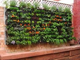 Small Picture Urban deck vegetable garden Home Decor Interior Exterior