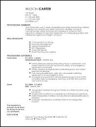 Free Contemporary Truck Driver Resume Templates | Resumenow
