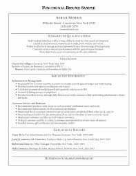 Resume Template Hair Stylist Inspirational Blank General Ledger ...