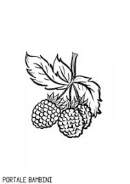 Raspberry Coloring Pages Online Free Print Portale Bambini
