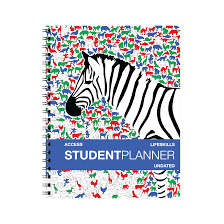 Elementary And Primary School Planners Action Agendas
