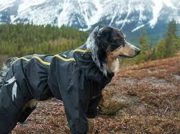 Hurtta Slush Combat Suit Dogs That Hike