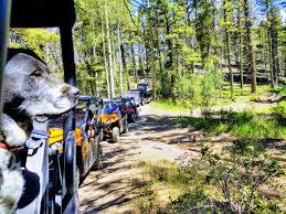 <b>Summer</b> 2020 <b>Off</b>-<b>Road Adventures</b> – Bobcat Pass Wilderness ...