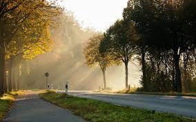 Good Morning Bilder Free Download Good ...