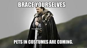 BRACE YOURSELF WINTER IS COMING - Ned stark winter is coming ... via Relatably.com
