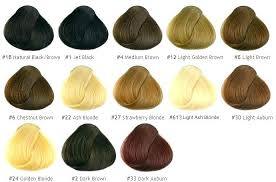 Hair Colour Chart Wheel Best Of Hair Color Chart Wheel