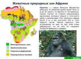 Интерактивное пособие по окружающему миру Животные природных зон  Смотрите похожие материалы