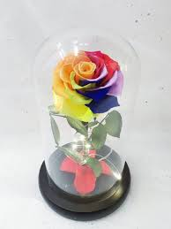 beauty and the beast glass dome rainbow