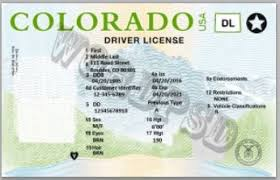 Offer License Both Drivers In And Authorized Fake Which We Real Is