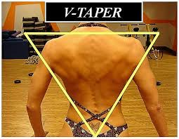 Image result for tapered v back female figure competition