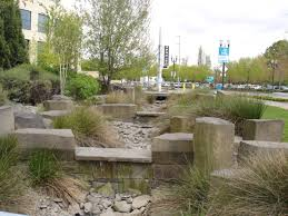 Small Picture This is the rain garden at the Oregon Convention Center Portland