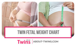 Pregnancy Stomach Measurement Chart Twin Fetal Weight Chart Estimated Growth Week By Week